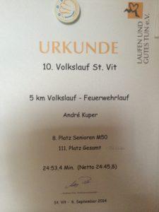 140906_DKMS Lauf III St. Vit